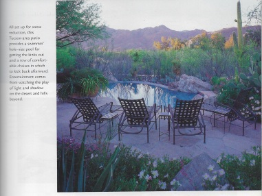 Swimming pool patio rock garden mountain succulent desert sunset